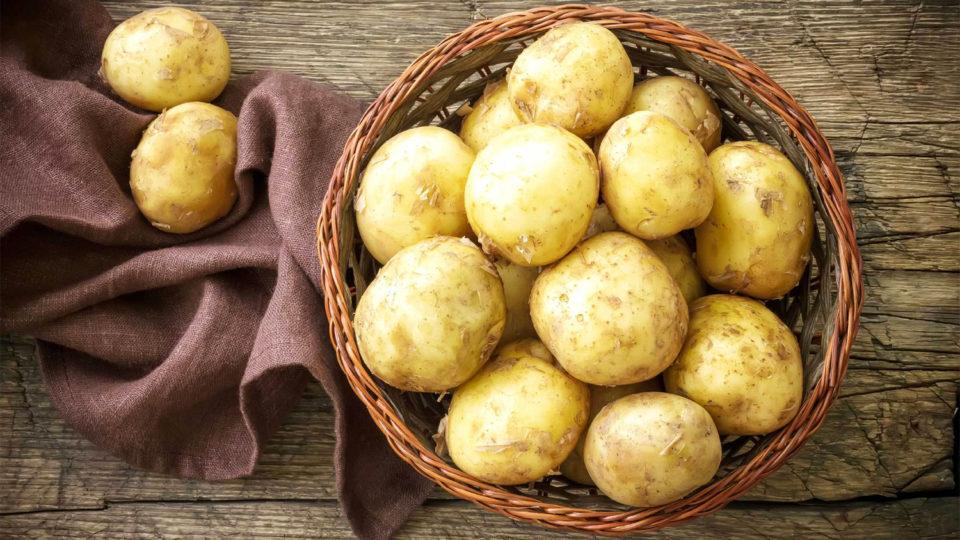 20 фактов о Картофеле