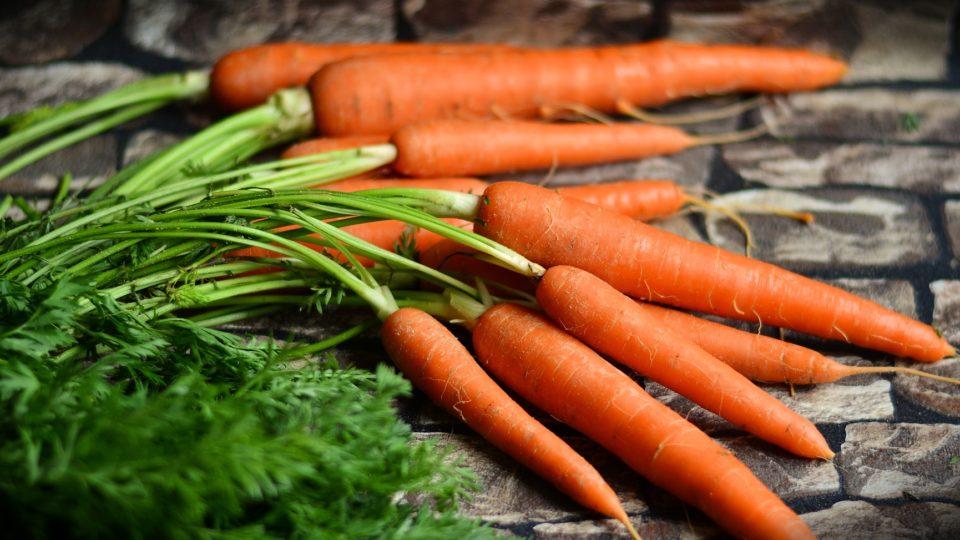 13 фактов о Моркови