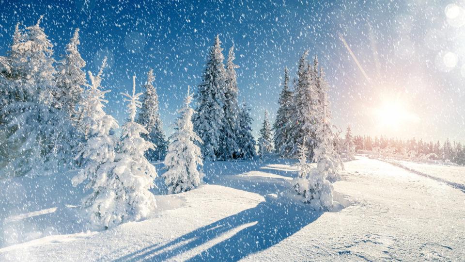 17 фактов о Снеге